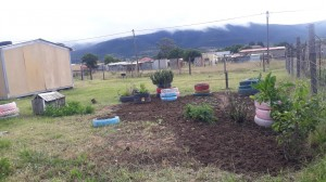 And our garden!
